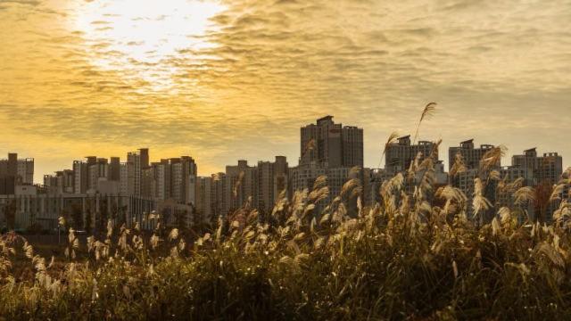 韓国の首都ソウル(インターネットより取得)